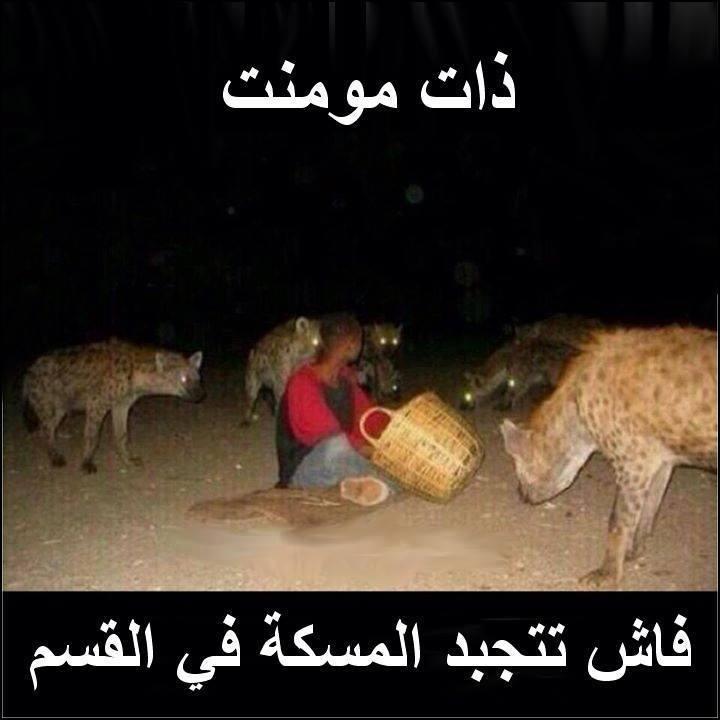 2 صور فيس بوك مضحكة