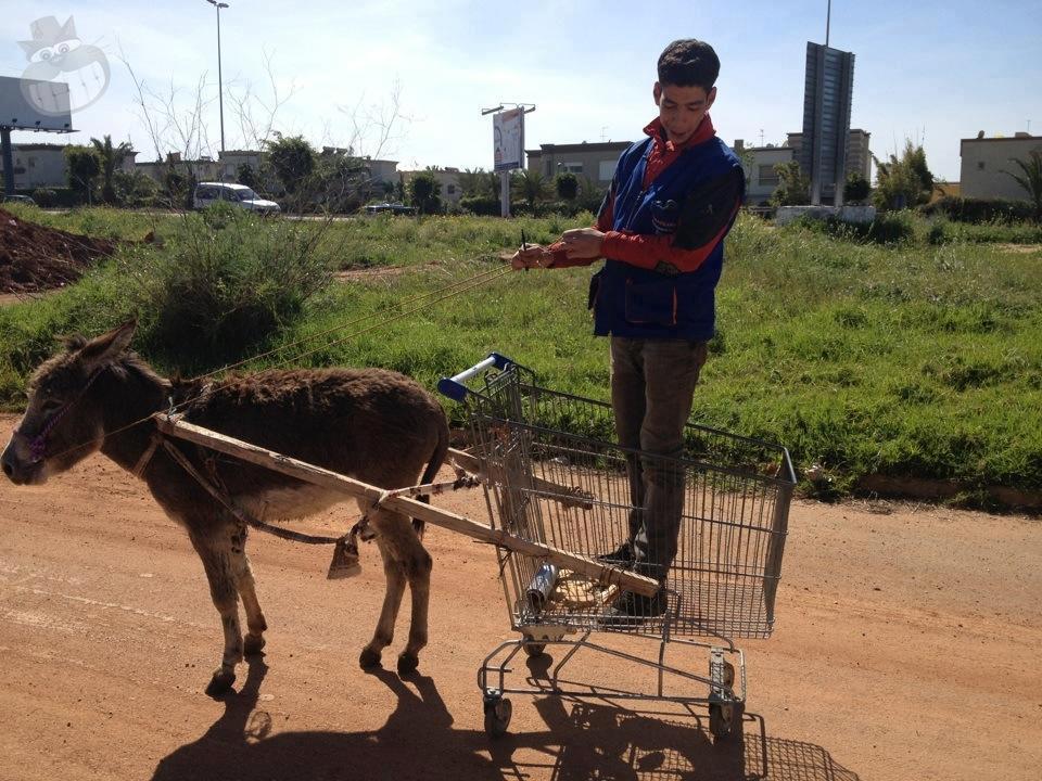 فقط في المغرب