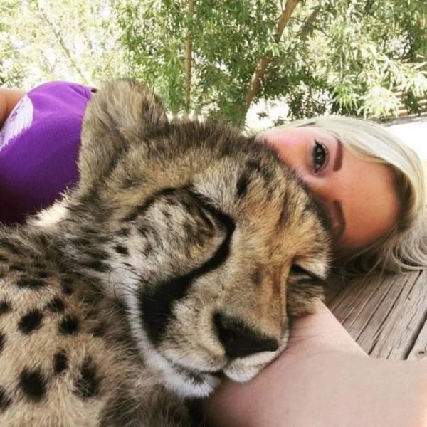 صور بنت جميلة تعيش مع نمر